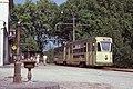 Trams de Neuchâtel (Suisse) (5047692698).jpg