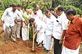 Tree planting in Thrissur Town Hall-5.jpg
