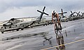 Triathlon competitor races past CH-53's at MCB Hawaii.jpg