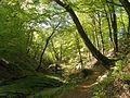 Troldeskoven - panoramio.jpg