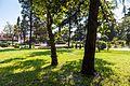 Tuapse, Krasnodar Krai, Russia - panoramio (6).jpg
