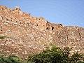 Tughlaqabad Fort 002.jpg