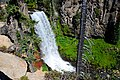 Tumalo Falls (Deschutes County, Oregon scenic images) (desDB3253).jpg