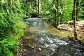 Turner Creek at Menefee County Park 2 - Yamhill County, Oregon.JPG