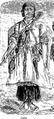Types Persana - Dessine de M. Jules Laurens- Louty.png