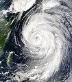 Typhoon Etau 2003.jpg