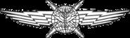 USAF - Cyberspace Operator Wings Basic