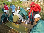 USAID supports community-based disaster drill in Nam Dinh province (35347602431).jpg
