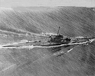 USS <i>S-29</i> (SS-134)