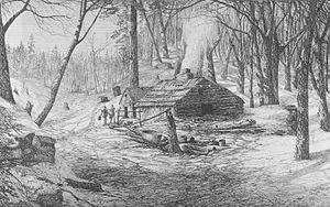 Sugar bush - A sugar shack and bush (1872)