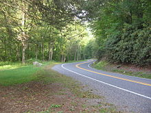 A two-lane road curving through a green forest, with grass at left