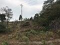 Upper Sittong, Darjeeling 03.jpg