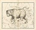 Ursa Major constellation - Johannes Hevelius - 1690.jpg