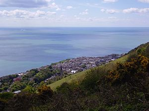 St Boniface Down - View of Ventnor, looking south-west down the steep southern face of the down