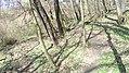 Verőce, 2621 Hungary - panoramio (90).jpg