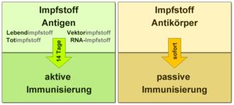 hpv impfung totimpfstoff)