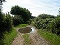 Verwood, bridleway - geograph.org.uk - 1441951.jpg