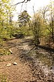Vidange lac des Minimes avril 2010 - 003.JPG