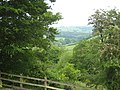 View down the Tamar valley from Tutwell - geograph.org.uk - 819849.jpg