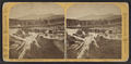 View from Bartlett's, looking east, by Styles, A. F. (Adin French), 1832-1910.png