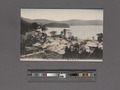 View of Hakone (NYPL Hades-2360093-4043892).tiff