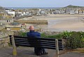 View over St Ives - geograph.org.uk - 1223711.jpg