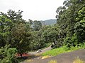 Views from Iritty - Virajpet road (5).jpg
