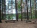 Vilnius. Green Lakes - panoramio.jpg