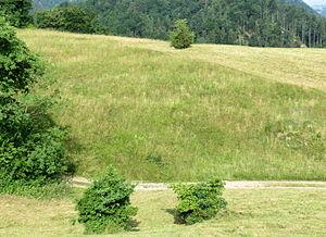 Vincarje - Bear Valley Mass Grave
