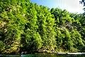 Vintgar Gorge (34972116584).jpg