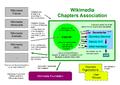WCA organization.png