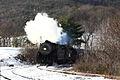 WMSR train at Helmstetter's Curve in Cash Valley.JPG