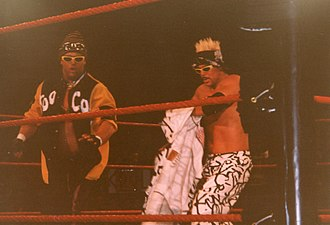 Brian Christopher - Lawler as Grandmaster Sexay (left) with Scotty 2 Hotty as Too Cool in 1999