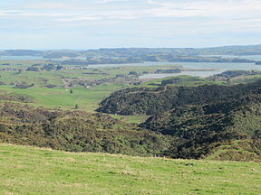 Waitetuna arm of Whaingaroa Harbour.JPG