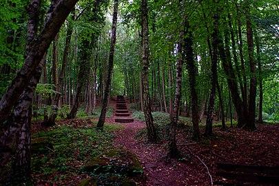 Wanderweg Historischer Halberg.jpg
