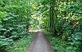 Wanderweg beim Wennsee in Scharbeutz - panoramio.jpg