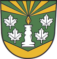 Wappen Lichte.png