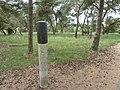 Weert-grafheuvelveld Boshoverheide (4).jpg