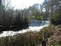 Weir on River Bollin near Styal - geograph.org.uk - 394234.jpg