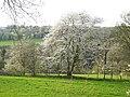 Wetter-Wengern, Blick vom Elbschetal-Radweg nach NW, Bild 2.jpg