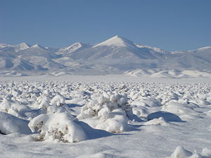 Great Basin - Great Basin snowstorm in the Snake Valley of Utah and Nevada