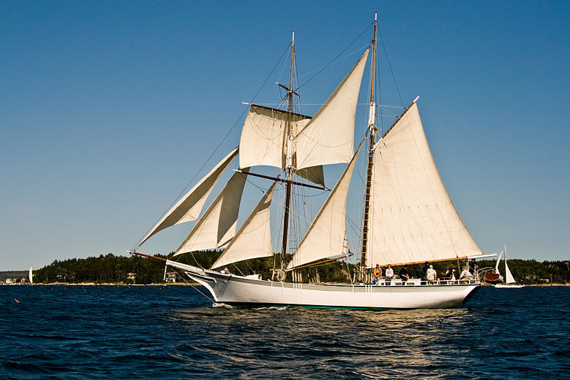 File:White Sailing Boat.jpg