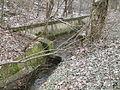 Wien Schreiberbach-24-Wildgrubgasse März-2013 IMG 0355.JPG