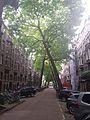 Willemspark, 1075 Amsterdam, Netherlands - panoramio (1).jpg