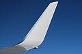 Wingletcloseup.jpg