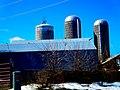 Wisconsin Dairy Farm - panoramio (6).jpg