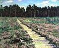Wood-path-in-spring.jpg!PinterestLarge.jpg