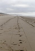 Woodend Beach, Canterbury, New Zealand (2).jpg