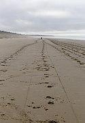 Woodend Beach, Canterbury, New Zealand (2).jpg