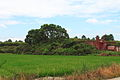 Wuyishan Chengcun Hancheng Yizhi 2012.08.24 10-51-39.jpg
